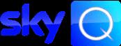 RgSkyService